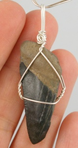 Black Shark tooth wire wrap