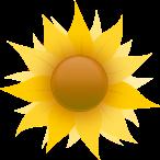 Healing energy of the sun